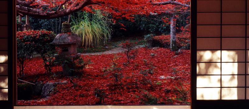 Jardines del templo Enrian, en Kyoto